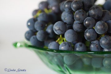 Concord grapes_Staats