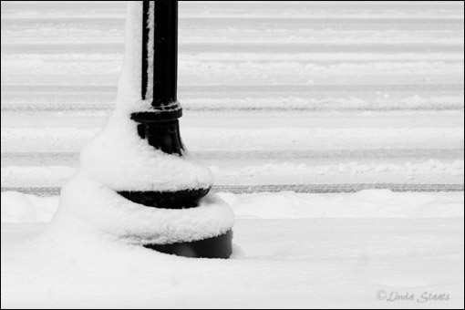 Snow tracks & light pole 70564_Staats