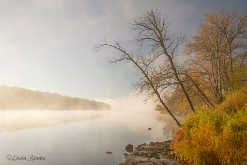 Fog at dawn on St Croix River_Staats 3713