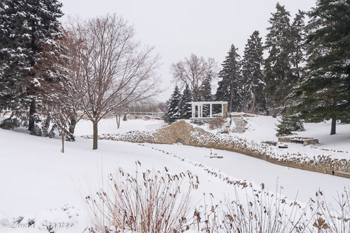 Winter at Como Park_Staats