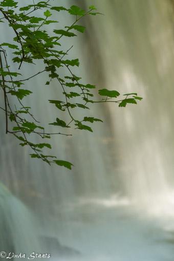 Morning light at Hidden Falls