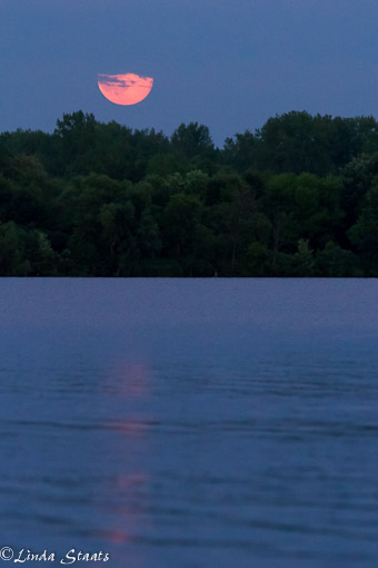 July's full moonrise_Staats