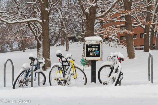 Free air and winter bikes 8488_Staats