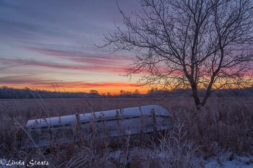Hoarfrost sunrise_Staats 11721