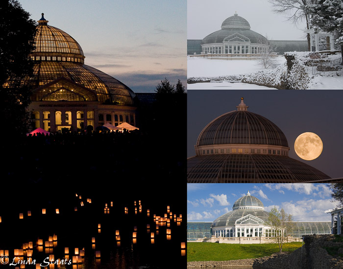 McNeely Conservatory 100th anniversary