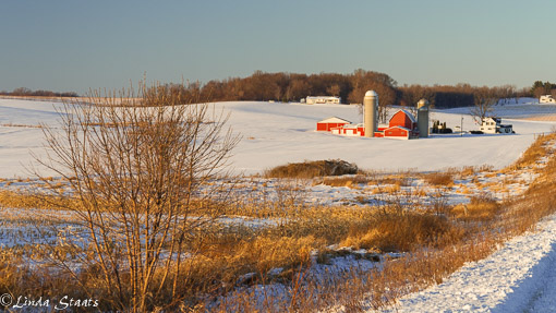 Farmland snow_Staats 12034