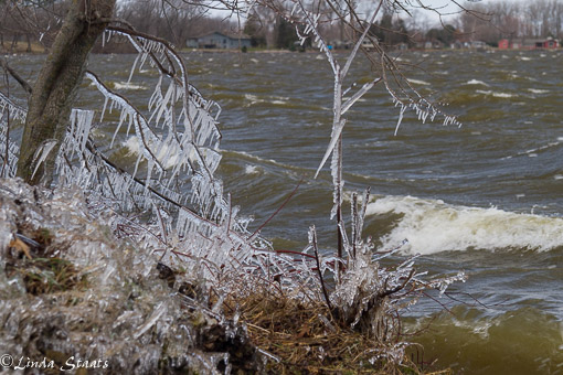 Winter waves Cannon Lake 12691_Staats