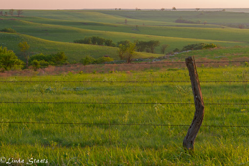 KS Flint Hills at sunset_Staats 13167