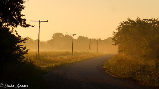 County road sunrise7D_13742_Staats