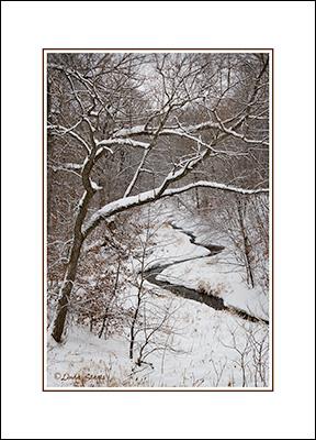 snow,winter, Wright County, Minnesota