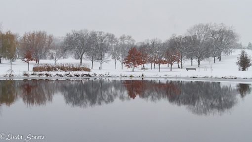 winter-stillness-and-reflection_15035-staats