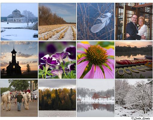 12-photos-of-2016_staats