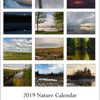 2019 Desk calendar collection