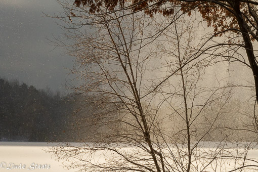 Backlit blowing snow 21409_Staats