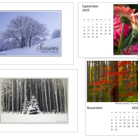 Holiday cards and 2020 desk calendars