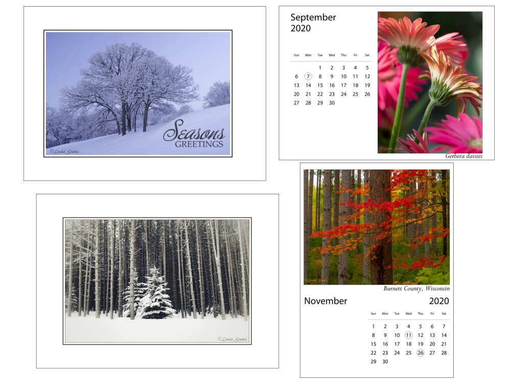 Staats_holiday cards_calendars 2019_2020