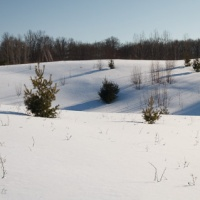 A snowshoe hike through the prairie