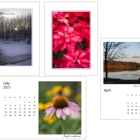 Holiday cards and 2021 desk calendars